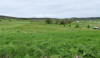 tbd Big Bend Road, Bland, Virginia 24315, ,Land,Big Bend,408688